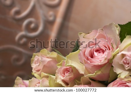 Beautiful pink roses bouquet in a terracotta pot