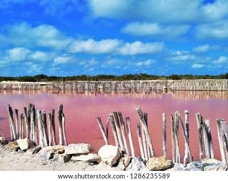 Beautiful pink salt lake (laguna rosada) at Salineras Xtampu, complex of salt lakes near Merida between Progreso and Telchac Puerto in north Yucatan, Mexico. It is home to flamingos and other birds.