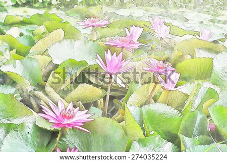 Beautiful Pink Water Lilies Floating on a Lake, water color style