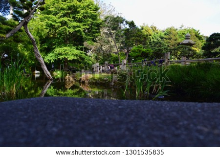 Beautiful place with trees and a river #1301535835