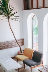 Beautiful plant on corner at minimalist home interior