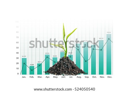 Beautiful plant with growing graph chart on white background.business investment financial growth concept