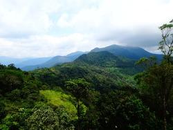 Beautiful Ponmudi Hills, Kerala.