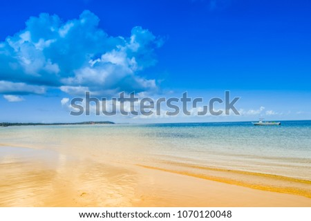 Beautiful  pristine and isolated Portuguese Island beach with turquoise water , Mozambique. Best place to feel relaxed and enjoy the tranquility of nature , green water ,