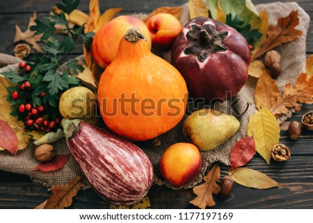 Beautiful Pumpkin, vegetables on bright autumn leaves, acorns, nuts on wooden rustic table. Space for text. Fall season greeting card. Atmospheric image. Happy Thanksgiving concept.