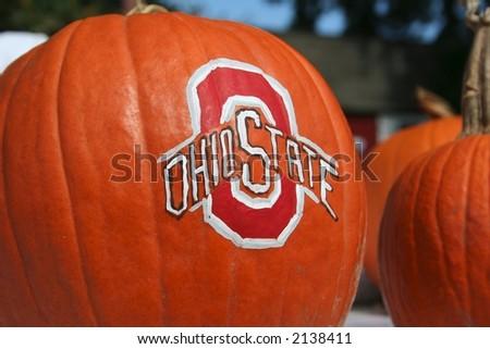 Beautiful pumpkins - stock photo