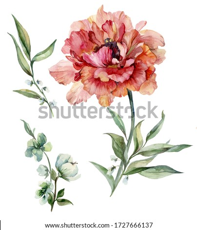 Beautiful purple peony flower on a stem with green leaves. Set flower and bud isolated on white background. Watercolor painting. Hand drawn and painted floral illustration.