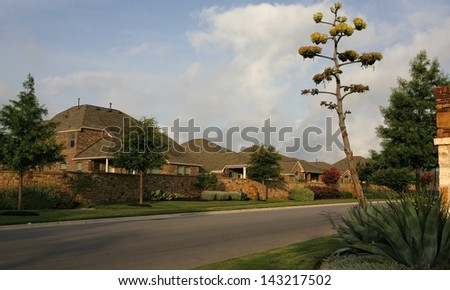 Beautiful quiet neighborhood in early morning light - southern style -residential street