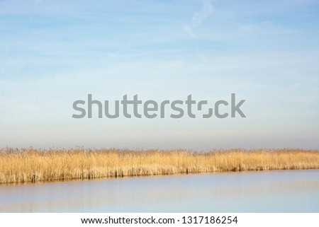 Beautiful quiet typical landscape in the Netherlands. Example of space and tranquility in a small country. The Pelgrimspad, a traditional trail, leads through this appealing and tranquil nature area #1317186254