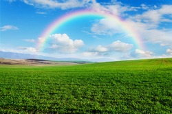 beautiful rainbow and green field and blue sky