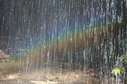 Beautiful rainbow and waterfall in the forest in the morning for nature and life concept