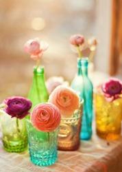 beautiful ranunculus in the bottles