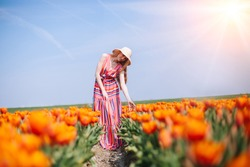 Beautiful red hair woman wearing in striped dress standing on colorful tulip flower fields in Amsterdam region, Holland. Magical Netherlands landscape with tulip field. Trevel and spring concept