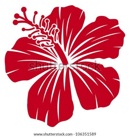 Beautiful red hibiscus flower