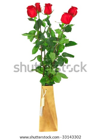 Beautiful  red roses in vase. Isolated