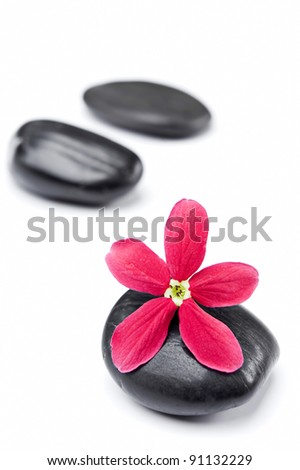 Beautiful red tropical flower on spa stone isolated white background