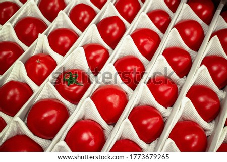 Beautiful, ripe tomatoes in a white crate box. Red summer vegetables. Natural organic food. High quality photo