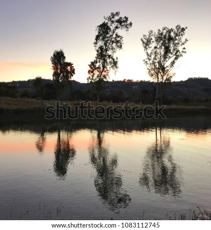 beautiful ripple reflection effect view of trees scenic golden horizon sky sunset in lake water, landscape trees, forest and mountain is scene, feeling tranquil, beauty in nature, mental life concept #1083112745