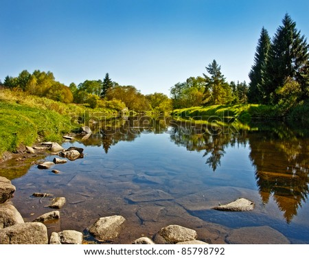 beautiful river in forest - fall day
