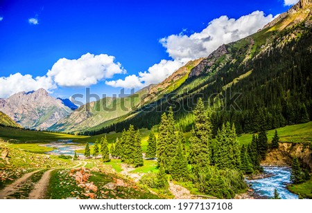 Beautiful river valley in the mountains. Mountain river valley landscape. Green valley in mountains. Mountain landscape