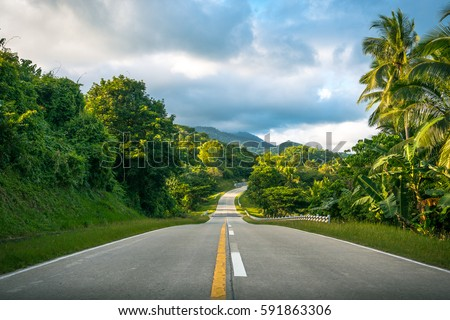 Beautiful road cutting through lush tropical jungle