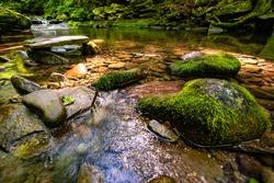 Beautiful rocky sundown forest river cascades summer day nobody