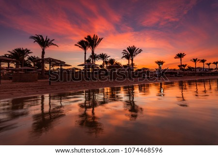 Beautiful romantic sunset over a sandy beach and palm trees. Egypt. Hurghada. #1074468596