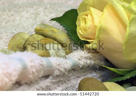 Beautiful rose over rocks with a towel