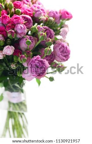 Beautiful roses flowers isolated on white background #1130921957