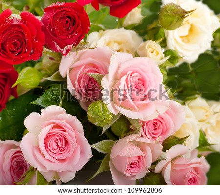 Beautiful roses in retro style, flower, floral background