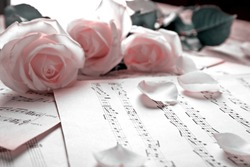 Beautiful roses on music notes background