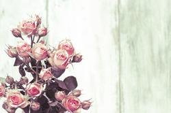 Beautiful roses on wooden background, holidays romantic background,vintage rose