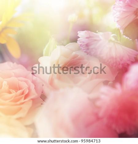 beautiful roses surrounded with other fowers. Made with color filters