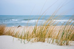 Beautiful rough blue sea with waves and sandy beach with reeds and dry grass among the dunes, travel in summer and holidays concept