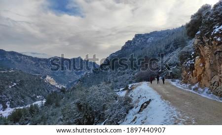 Beautiful rural road view in winter Stok fotoğraf ©