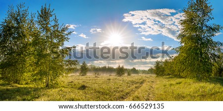 beautiful rural summer landscape with road, a meadow,forest and fog, panorama. panoramic view of blue sky with sun, clouds and sunrise. sunbeams morning #666529135