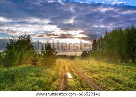beautiful rural summer landscape with road, a meadow,forest and fog. view of blue sky with sun, clouds and sunrise. sunbeams morning #666529141