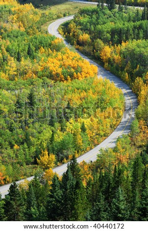 Beautiful s shape curve of a winding road in autumn forests, kananaskis country, alberta, canada