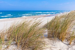 Beautiful sand beach with dry and green grass, reeds, stalks blowing in the wind, blue sea with waves on the Baltic Sea in Nida, Neringa, Lithuania