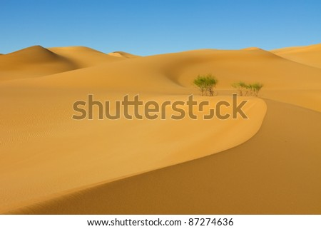 Beautiful Sand Dune in the Awbari Sand Sea, Sahara Desert, Libya