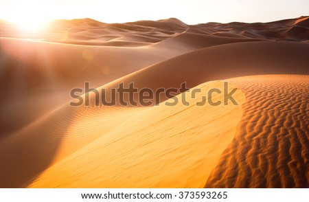 Beautiful sand dunes in the Sahara desert #373593265