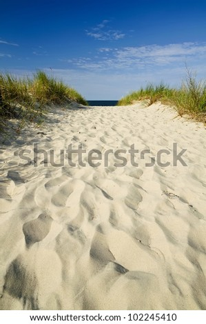 beautiful sand path to beach on Usedom island in Germany