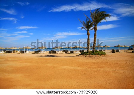 Beautiful sandy beach in Sharm El Sheikh, Egypt