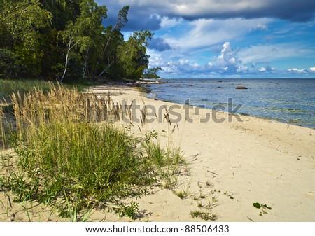 Beautiful sandy beach near Kaltene, Latvia, Europe