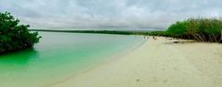 Beautiful Sandy Beach of Tortuga Bay in Santa Cruz, Galapagos Islands