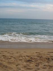 Beautiful scene at puri sea beach