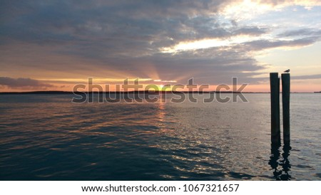 Shutterstock Beautiful scene of the sunset in Harbour Island, Eleuthera, Bahamas. With a bird over two trunks and the reflection over the water