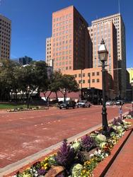 Beautiful scenery downtown Forth Worth