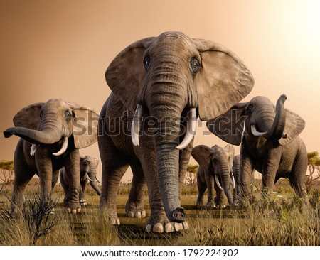 Beautiful scenery of a herd of majestic African Elephants  in the savanna at sunset, 3d render.
