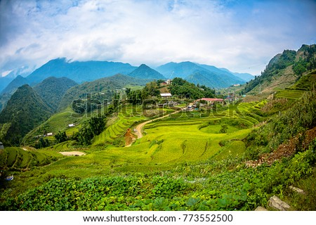 Beautiful scenery of the rice fields at Cat cat Village. #773552500